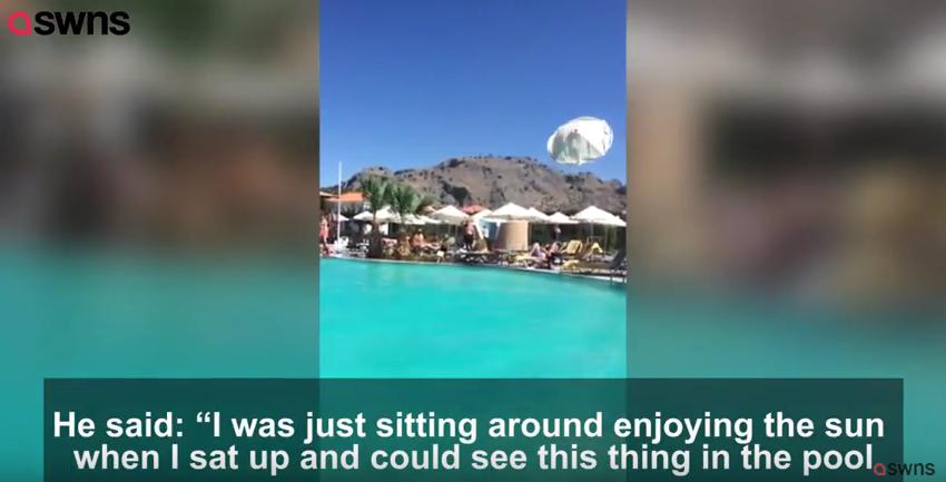 Торнадо вышел из бассейна и поднял в воздух зонтики: Видео. Фото Скриншот Youtube