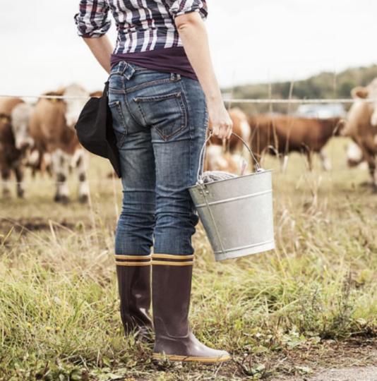 Смартфон поможет петербуржцам выявить поддельное молоко. Фото Getty