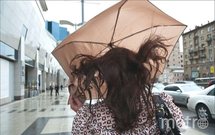 Погода в Петербурге уже осенняя.