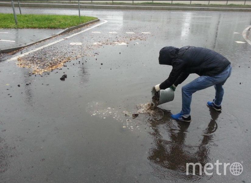 И так сойдет: В Петербурге яму с водой засыпали щебнем. Фото gorod.gov.spb.ru