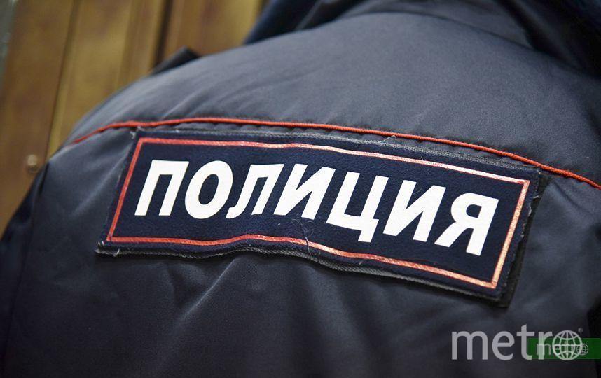 В Петербурге вандалы разгромили десять могил на Красненьком кладбище. Фото Василий Кузьмичёнок
