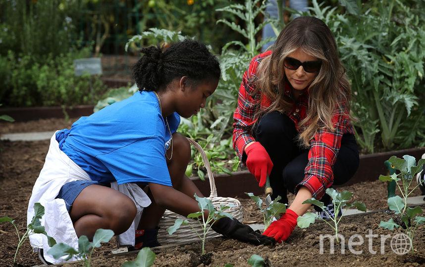 Мелания Трамп в саду Белого дома. Фото Getty