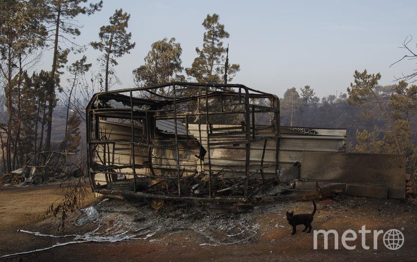 """Ураган """"Офелия"""" стал причиной страшных пожаров в Португалии. Фото Getty"""