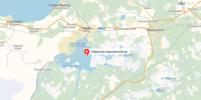 В Ленобласти пограничники спасли тонувших петербуржцев