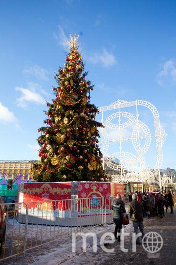 Стало известно, сколько продлятся новогодние каникулы в 2018 году. Фото Василий Кузьмичёнок