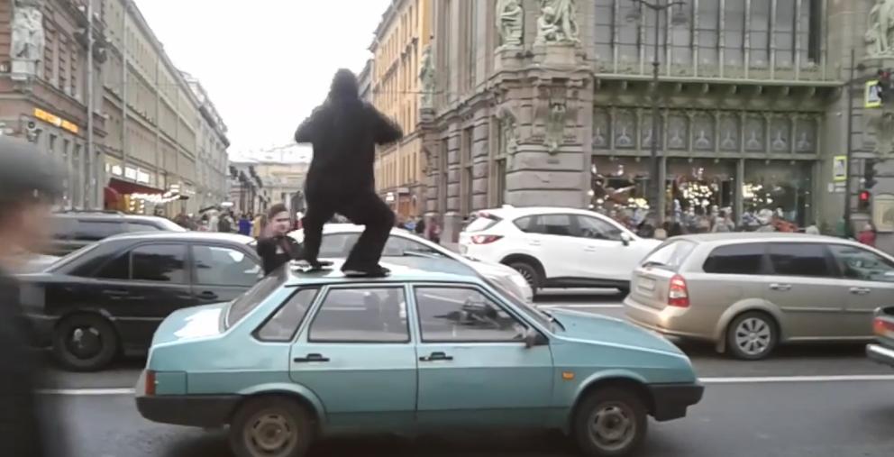 По Петербургу прогулялась обезьяна, воровавшая бананы и пиво.
