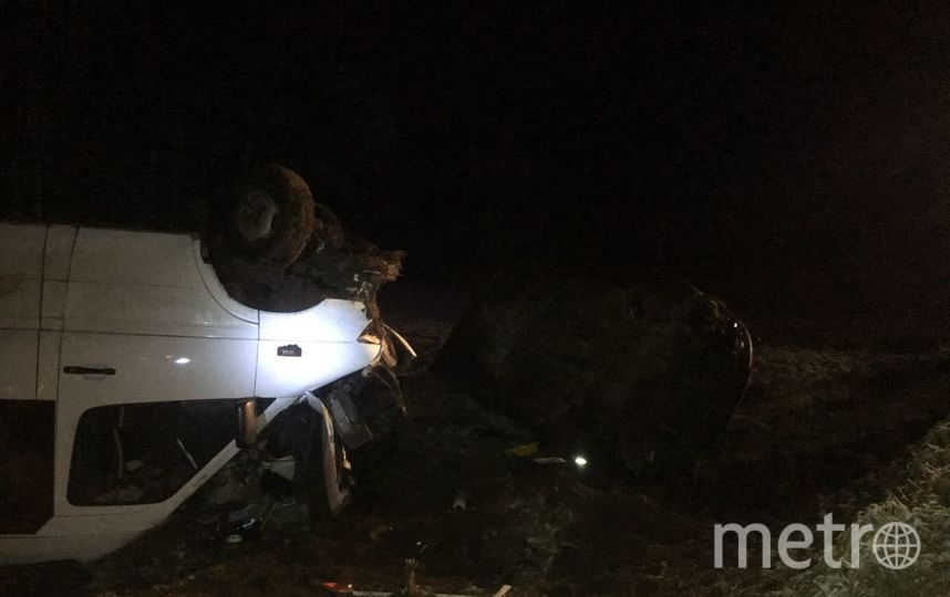 Появились фото с места жуткого ДТП в Волосовском районе Ленобласти. Фото Пресс-служба МЧС РФ по ЛО.