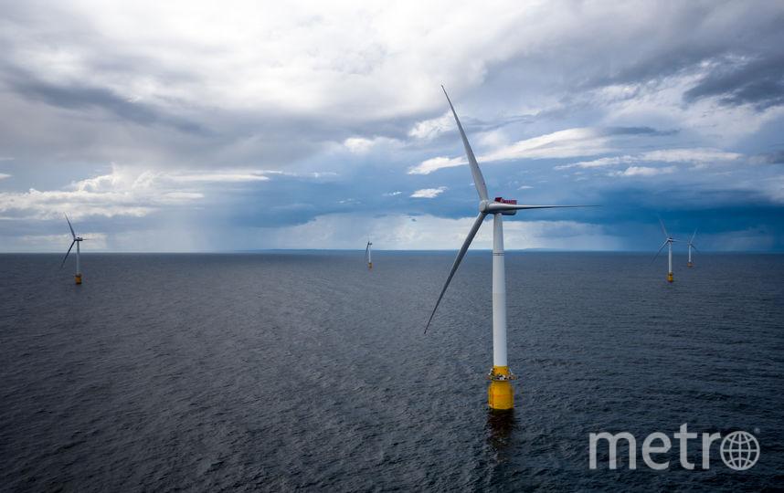 Плавучая ветряная ферма. Фото Getty