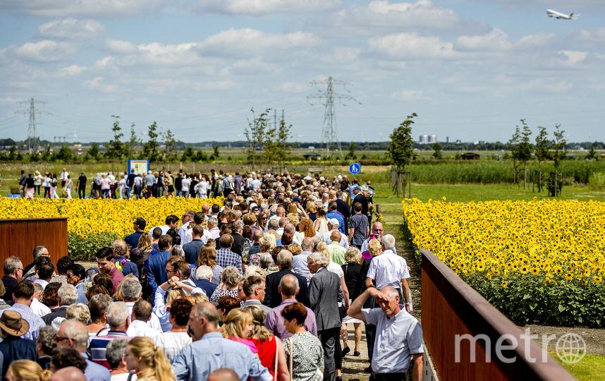На месте трагедии MH17. Фото Getty