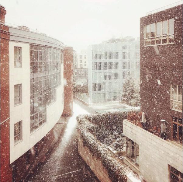 Скриншот instagram.com/braceyourdk/?hl=ru.
