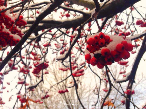 Скриншот instagram.com/julichka0404/?hl=ru.