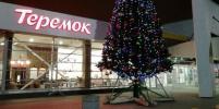В Петербурге появилась первая новогодняя елка