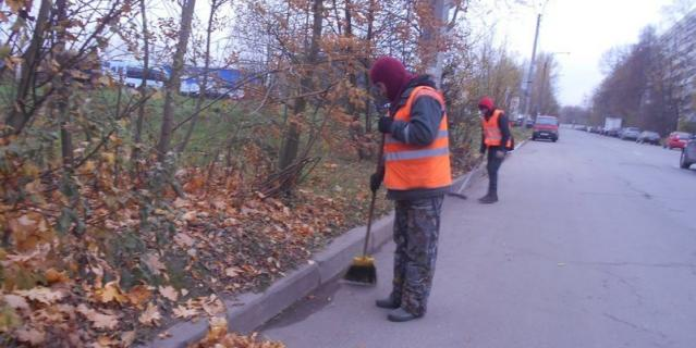 Фото: gov.spb.ru/gov/otrasl/blago.