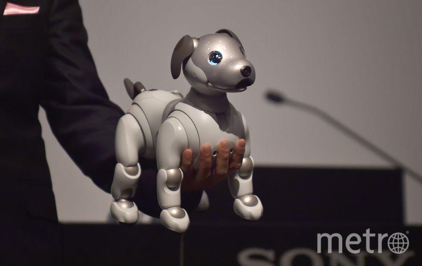 Презентация Sony. Фото AFP