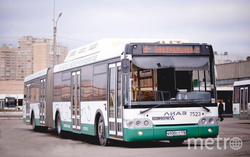 Ночные автобусы вПетербурге будут курсировать три ночи подряд