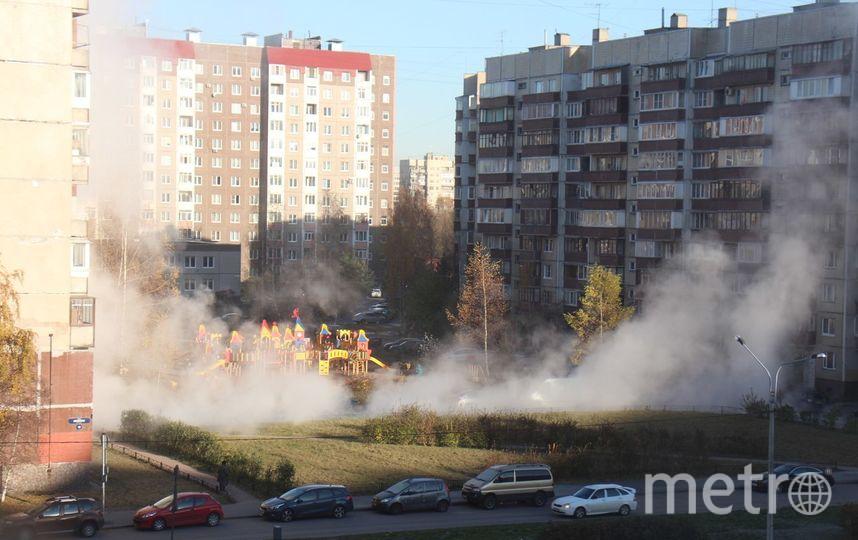 ДТП и ЧП | Санкт-Петербург | vk.com/spb_today. Фото Катерина Голубкова, vk.com