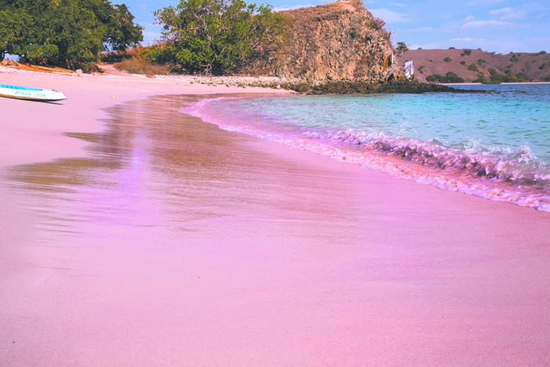 Пляж Пинк с розовым песком на острове Комодо. Фото Анна Киселёва.