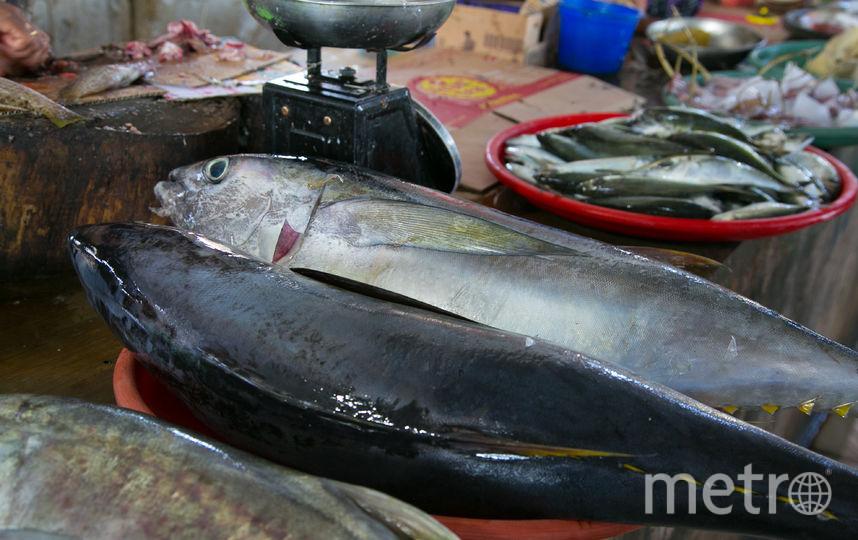Рыбный рынок на острове Бали. Фото Анна Киселёва.