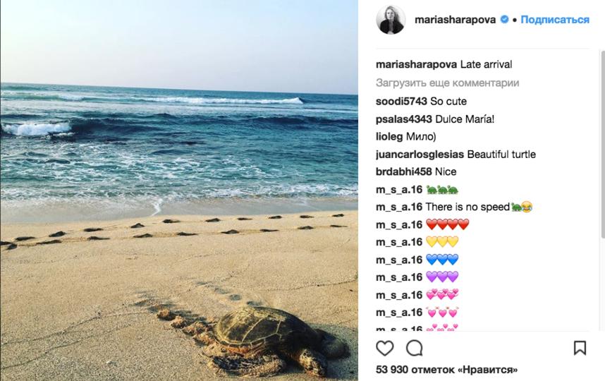 Мария Шарапова на отдыхе. Фото instagram.com/mariasharapova