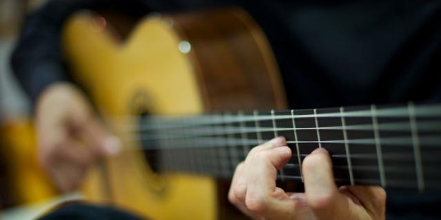 Фестиваль гитаристов имени А. Фраучи.