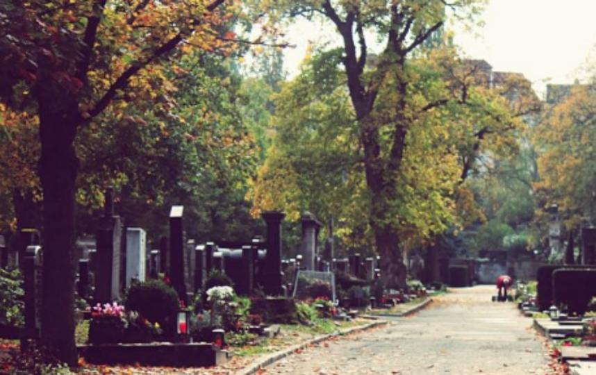 Полсотни могил повреждены в Петербурге: возбуждено уголовное дело. Фото Getty