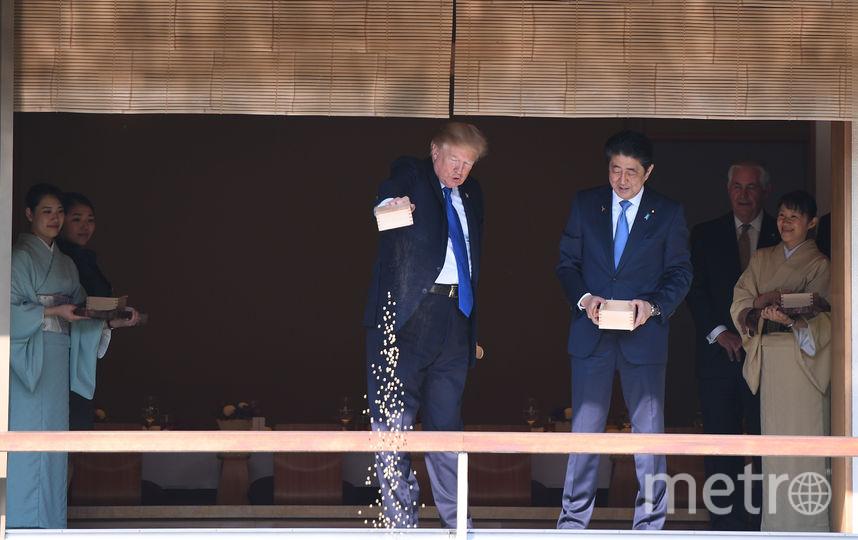Трамп и Абэ кормят рыбок. Фото AFP