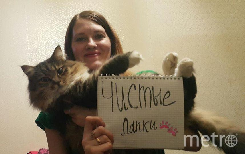 Селфи с котиком. Кота зовут Перец. Фото Елена Иванчикова