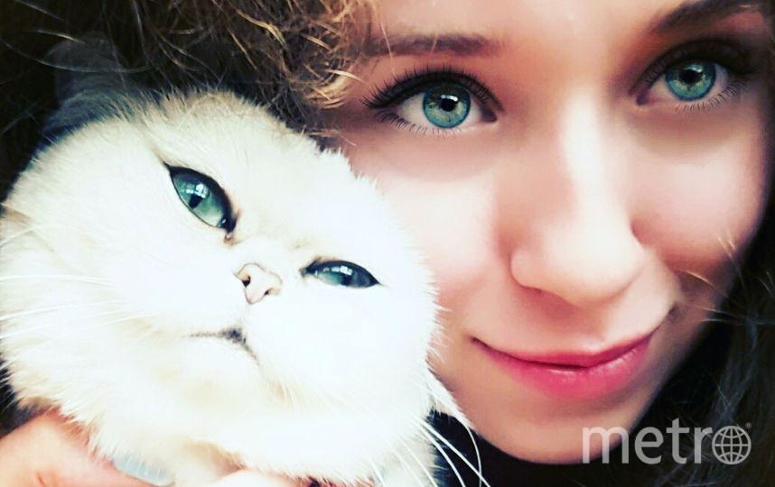 Селфи с котиком. Кошка Маргоша. Фото ТРИГИ АМИНА