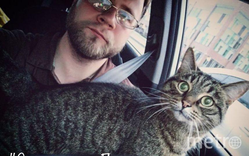 Селфи с котиком. Дмитрий Храмичев.