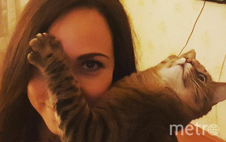 Селфи с котиком. Кошка Рыся. Фото Ухлова Евдокия
