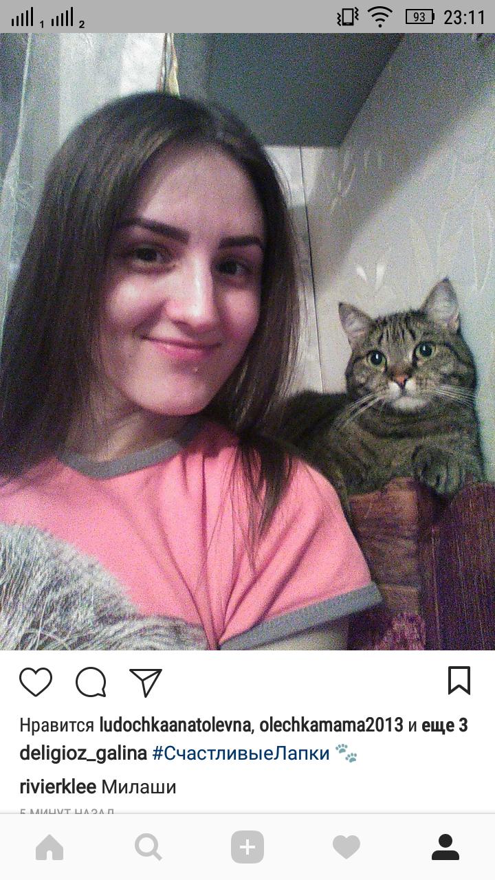 Селфи с котиком. Мишель. Фото Галина Делигио