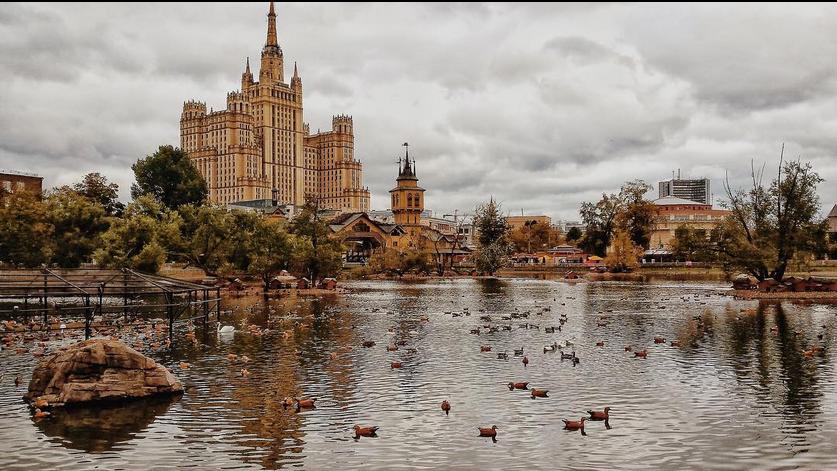 """""""Яндекс"""" назвал самые популярные запросы о городах РФ. Фото Скриншот www.instagram.com/stark.favorites/"""