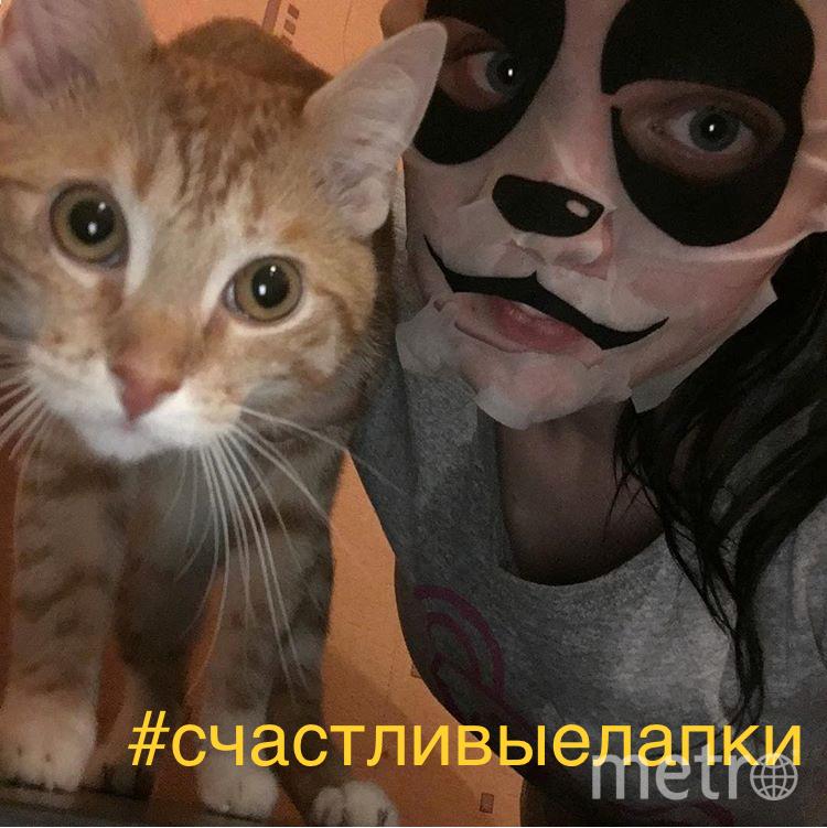 Селфи с котиком. Котик по имени Крош. Фото Серова Алёна Олеговна