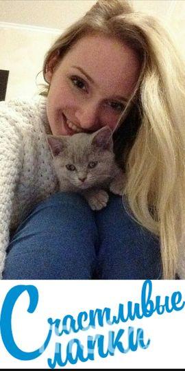 Боровикова Анастасия , кот Сладик.