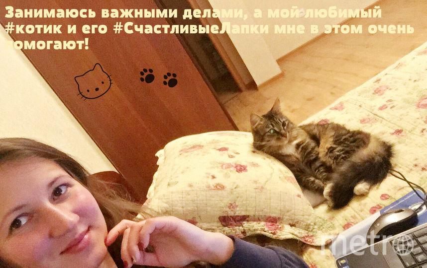 Меня зовут Анастасия Халевина (Афанасьева). Кличка моего котика - Слипперс.