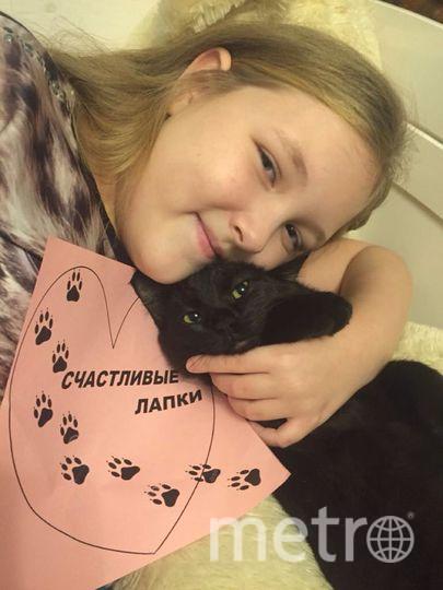 Кота зовут Уголек. Моя дочь Клюева Виктория Дмитриевна. Фото Клюева Анна Ярославовна