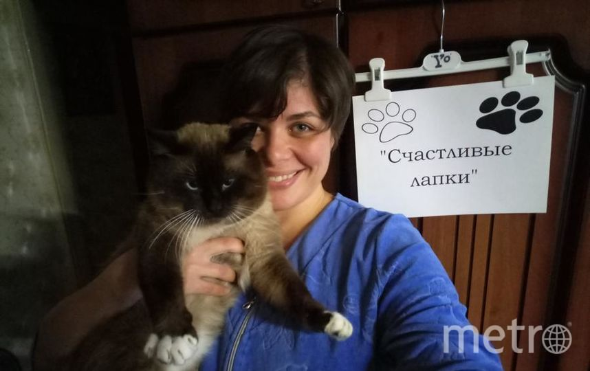 Наталья Брынцева. Кличка кота - Рикки.
