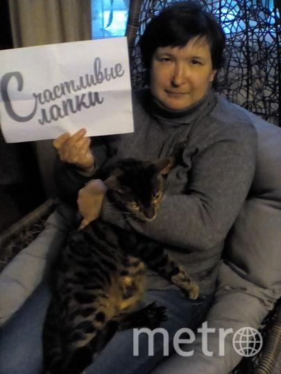 Наталья Тимофеева и кот Тайсон.