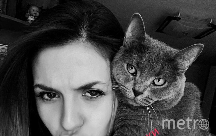 Селфи с котиком.