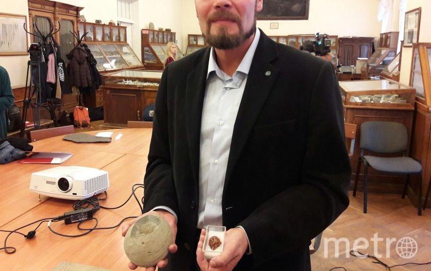 """В Петербурге учёные показали крошечное яйцо динозавра. Фото Софья Сажнева, """"Metro"""""""