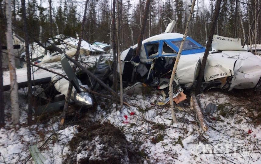 Фото рухнувшего в Хабаровском крае самолёта появилось в Сети. Фото РИА Новости