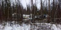 Фото рухнувшего в Хабаровском крае самолёта появились в Сети