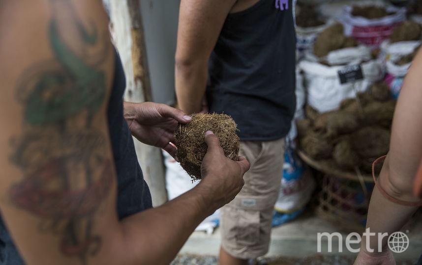Для индийцев традиция имеет глубокий сакральный смысл. Фото Getty