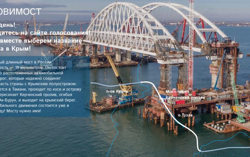 Это будет самый длинный мост в России. Фото https://назовимост.рф/