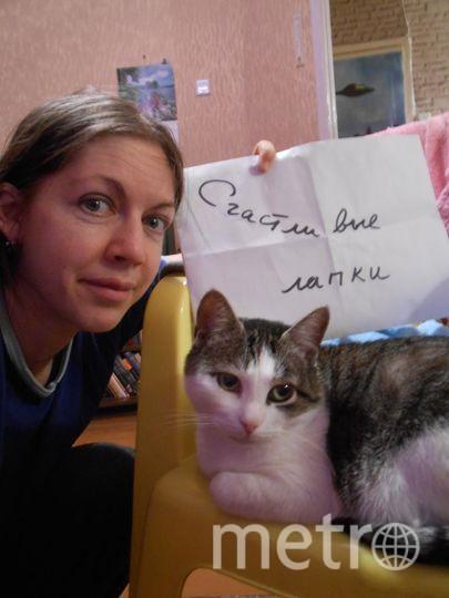 Копысова Екатерина, кот Элис.