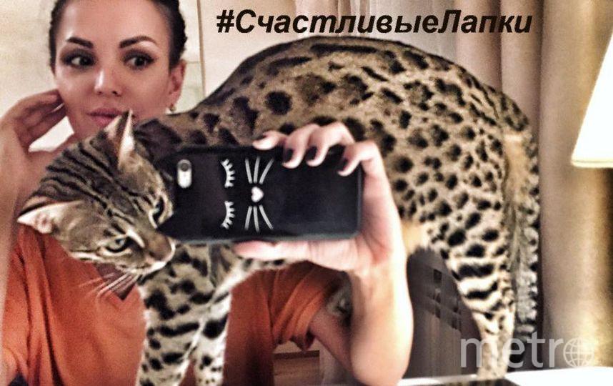 Маргарита Людоговская и кот Лео.