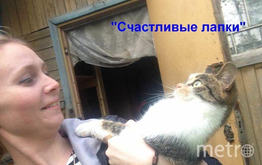 Иванова Юлия Александровна и кошка Нафаня.