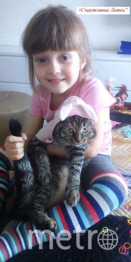 На фото Даша Мошнина 5 лет и ее кошка Буся!