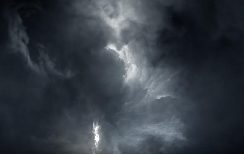 """Фантастические твари и где они обитают 2"". Фото Warner Bros. Pictures International, Скриншот Youtube"