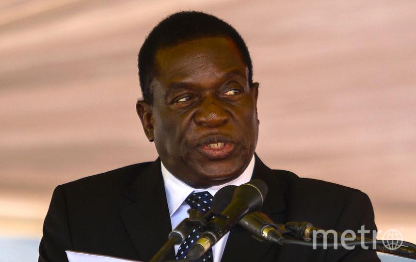 Эммерсон Мнангагва. Фото AFP